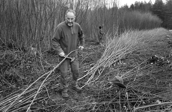 2008-02-05 Alan Waters, Wildwood coppicing nr. Tillington